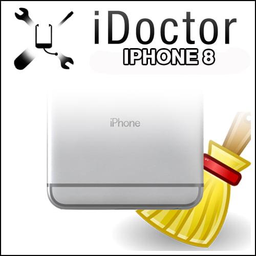 Servizio di Pulizia USB iPhone 8